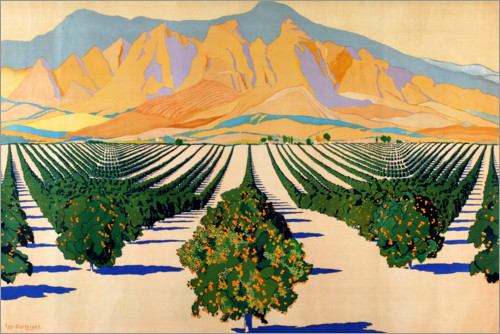 Premiumposter South African Orange Orchards