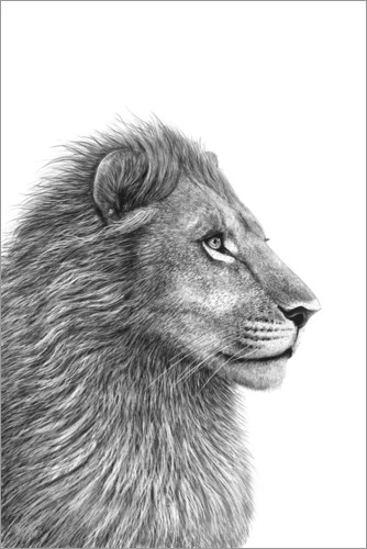 Poster The Lion