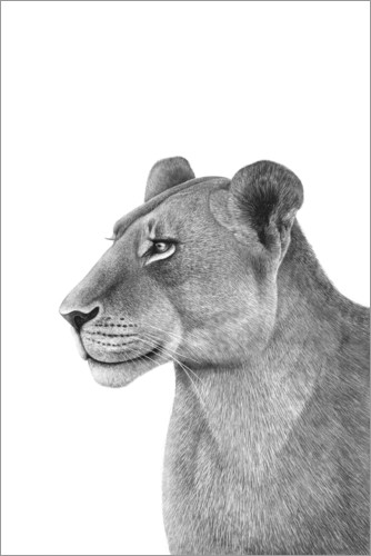 Premiumposter The Lioness