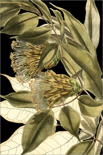 Premiumposter Tranquil Tropical Leaves VI