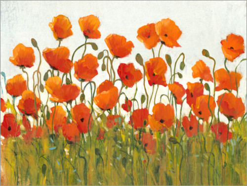 Premiumposter Rows of Poppies I
