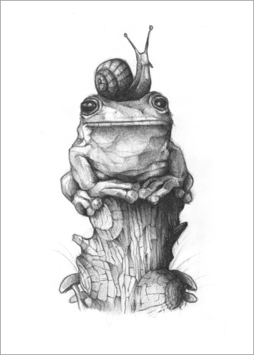Premiumposter The frog and the snail, black and white
