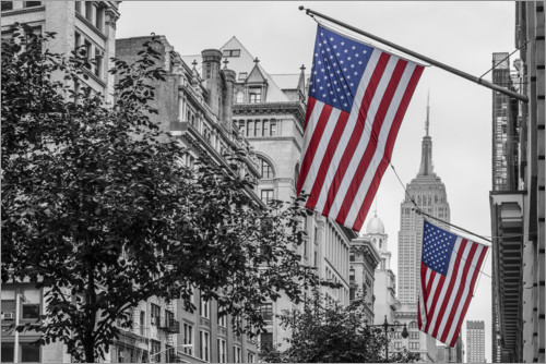 Premiumposter Flags in New York