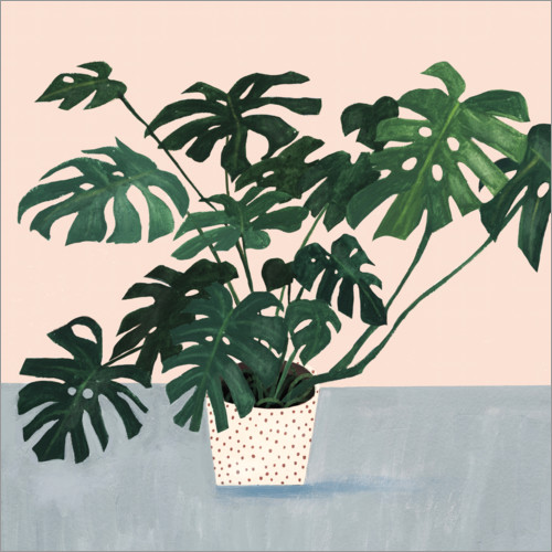 Premiumposter Monstera in spotted pot
