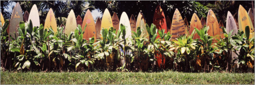 Premiumposter A fence made of surfboards