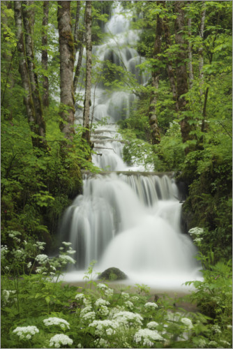 Premiumposter Waterfall in the forest, France