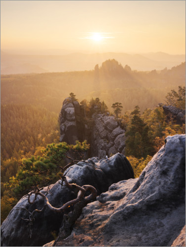 Premiumposter Evening in the Elbe Sandstone Mountains
