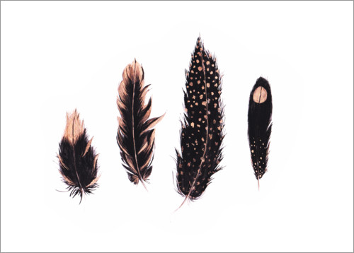 Premiumposter Ink and rose gold feathers