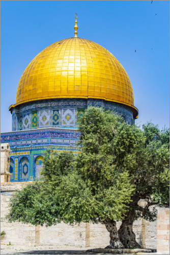 Premiumposter Dome of the Rock with olive tree