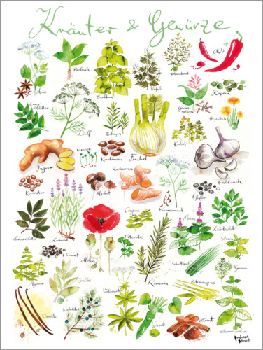 Poster Herbs and spices (german)