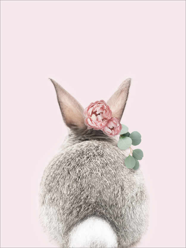 Premiumposter Flower bunny tail