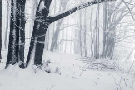 Canvastavla  Fog in the snowy winter forest - The Wandering Soul