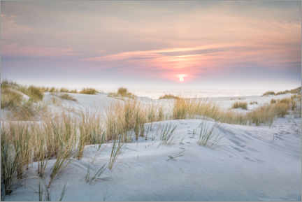 Premiumposter  Sunrise in the dunes on Sylt - Christian Müringer