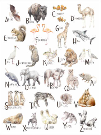 Canvastavla  Animals A to Z Alphabet (Dutch) - Wandering Laur