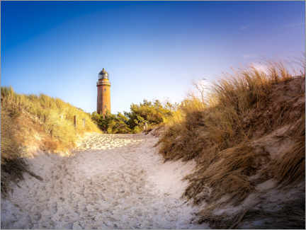 Premiumposter Lighthouse on the beach on the Darss