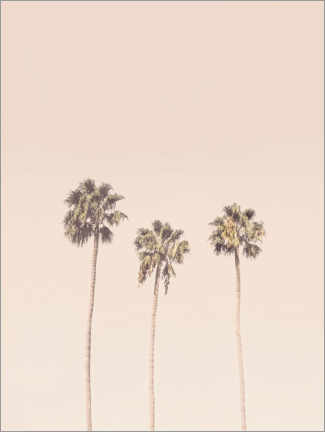 Premiumposter Pale pink palm trees