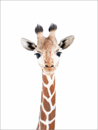 Canvastavla  Baby Giraffe - Sisi And Seb