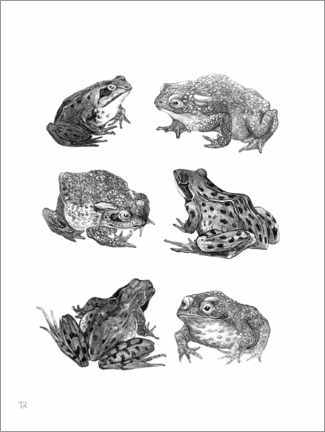 Canvastavla  Six frogs and toads - Theo van Hoytema