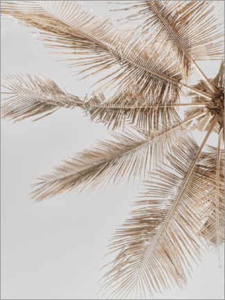 Canvastavla  Golden palm VII - Magda Izzard