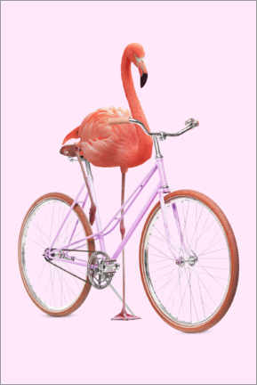 Canvastavla  Flamingo Bike - Jonas Loose