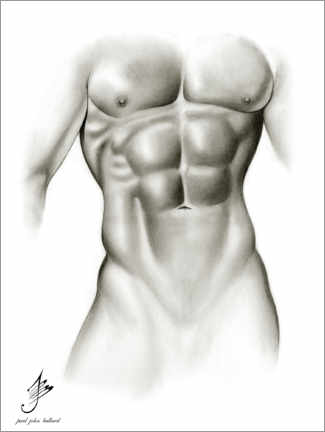 Premiumposter Male Torso