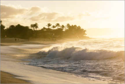 Canvastavla  Golden light on the beach in Hawaii - Road To Aloha