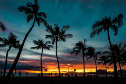 Premiumposter  Palm trees in the sunset, Hawaii - Road To Aloha