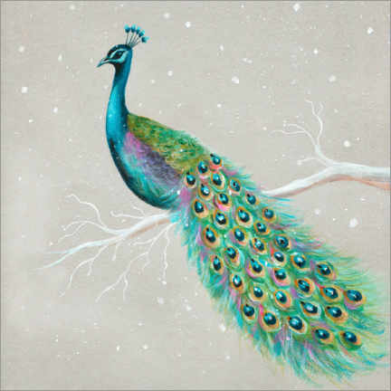 Canvastavla  Peacock in winter - Ileana Oakely