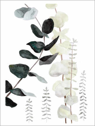 Premiumposter Botanical illustration mix