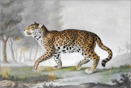 Canvastavla  Big panther - Léon de Wailly