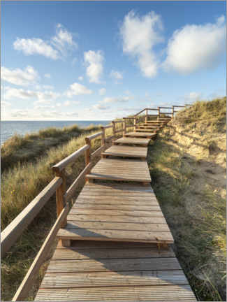 Premiumposter  Wooden walkway on Sylt near Kampen - Jan Christopher Becke