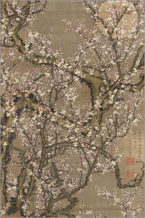 Premiumposter White plum blossoms and moon