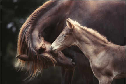 Aluminiumtavla  The bond between mother and child - Heike Willers