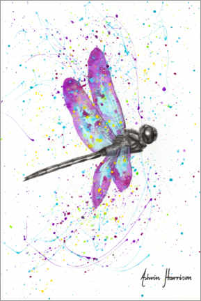 Canvastavla  Dancing dragonfly - Ashvin Harrison