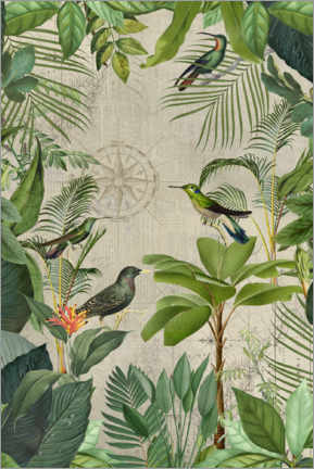 Premiumposter Tropical Journey Of Birds