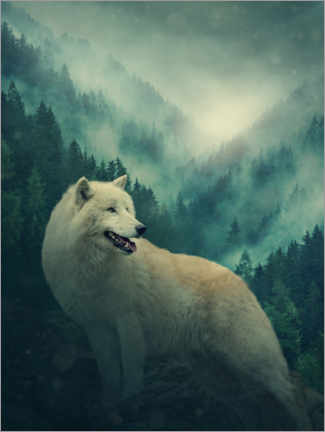 Premiumposter White wolf in the forest