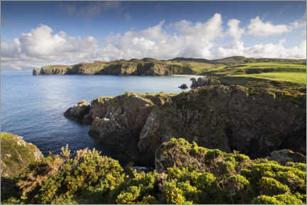 Trätavla  Ireland's coastline with hills and coves in sunshine - The Wandering Soul