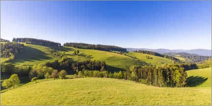 Premiumposter  Spring at St. Peter in the Black Forest - Dieterich Fotografie