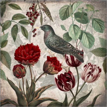 Premiumposter Vintage starling with tulips