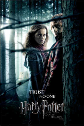 Premiumposter The Deathly Hallows I - Hermione & Ron