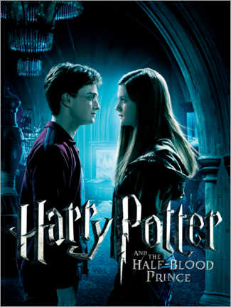Premiumposter  The Half-Blood Prince - Harry & Ginny