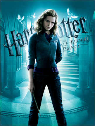 Canvastavla  The Half-Blood Prince - Hermione Granger