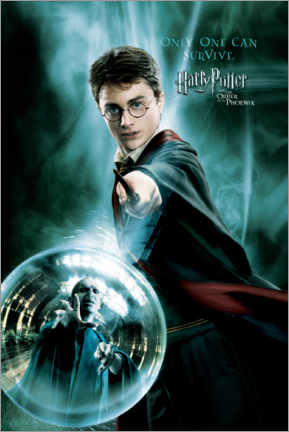 Premiumposter  The Order of the Phoenix - Harry Potter
