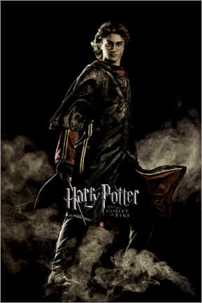 Premiumposter  The Goblet of Fire - Harry Potter