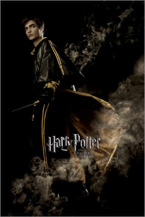 Premiumposter  The Goblet of Fire - Cedric Diggory