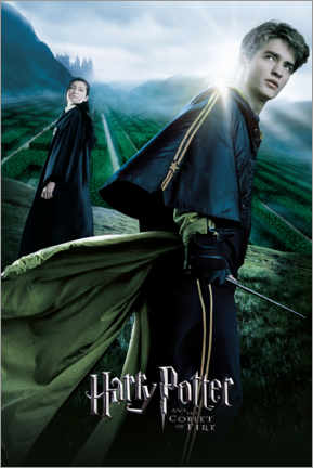 Premiumposter  The Goblet of Fire - Cedric & Cho Chang