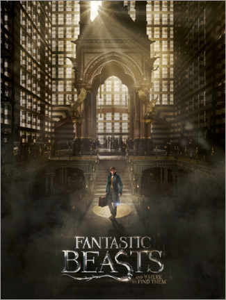 Galleritryck  Fantastic Beasts and Where to Find Them - Newt