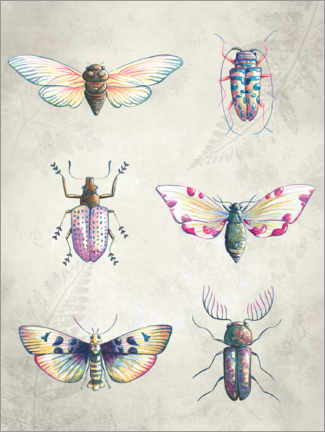 Premiumposter  Colorful beetles - Leonora Camusso