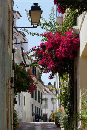 Canvastavla  Small alley with blooming red bougainvillea - Alexander Pöschel