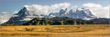 Premiumposter  Patagonian Andes - Torres del Paine - Dieter Meyrl